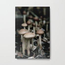 Shroomies Metal Print