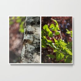 tree anatomy  Metal Print