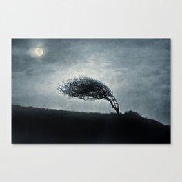 Unrequited love.... Canvas Print