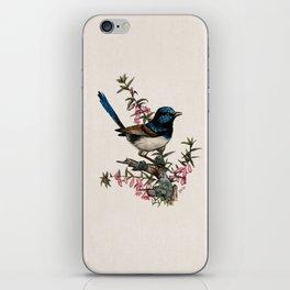 Australian Blue Wren iPhone Skin