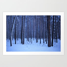 Winter pine forest in blue. Art Print