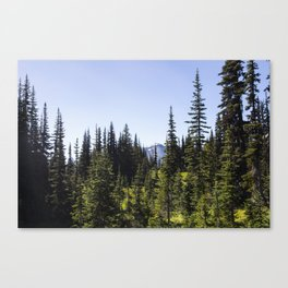 Mt. Rainier National Park 01 Canvas Print