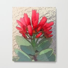 Agave with Red Flowers Metal Print