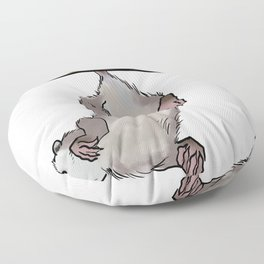 Hanging Opossum Floor Pillow