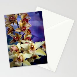 Just Like Angel Falls Stationery Cards