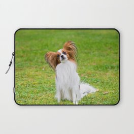 Portrait of a papillon purebreed dog sitting on the grass Laptop Sleeve