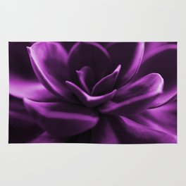 Succulent Plant In Violet Color #decor #society6 #homedecor Rug