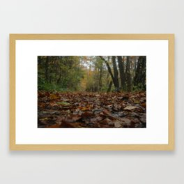 A quiet walk. Framed Art Print