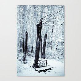 Stillness II Canvas Print