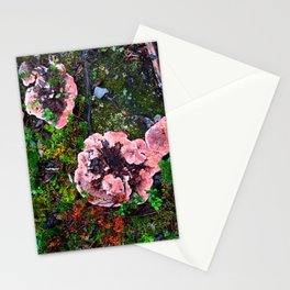Tundra I Stationery Cards