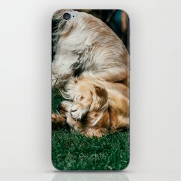 Grass is Greener iPhone Skin