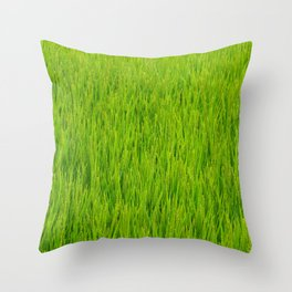 Green Japan Paddy field in summer Throw Pillow