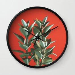 Copper Spoons - Kalanchoe orgyalis Wall Clock