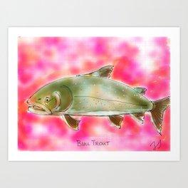 Bull Trout Art Print