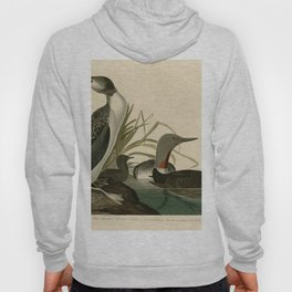 202 Red Throated Diver Hoody
