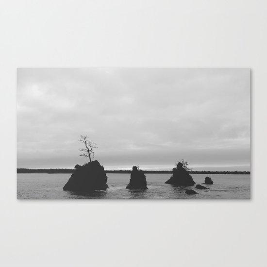 Land Meets Sea Canvas Print
