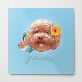 Toy Poodle Puppy Face Metal Print