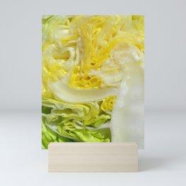 iceberg lettuce I Mini Art Print