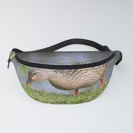 Female Mallard Duck Fanny Pack