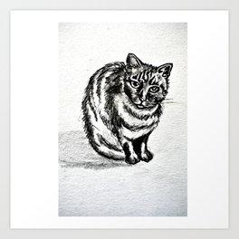 lolita cat Art Print