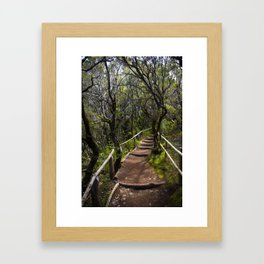 the Magic path Framed Art Print