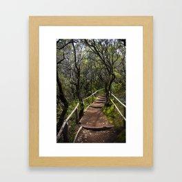 the Magic path Framed Art Print