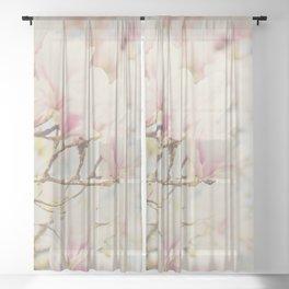 pink magnolia blossoms ... Sheer Curtain