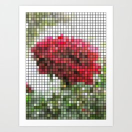 Red Rose with Light 1 Mosaic Art Print