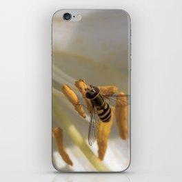Feeding on a lily iPhone Skin