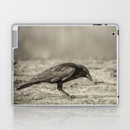 Curious Crow Laptop & iPad Skin
