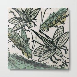 Locusts Metal Print
