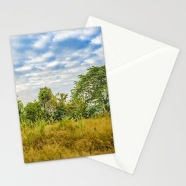 Meadow Tropical Landscape Scene, Guayaquil, Ecuador Stationery Cards