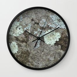 Lichen on granite Wall Clock