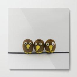 Kiwis birds Metal Print