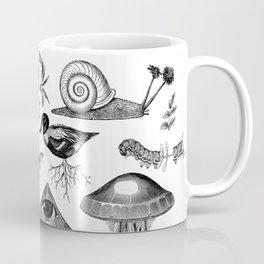 Curiosity Cabinet Collection Coffee Mug