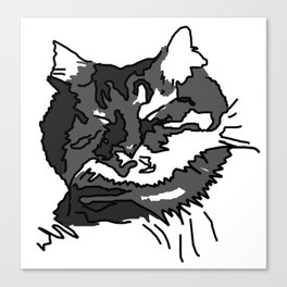 Cat Zzz... Canvas Print