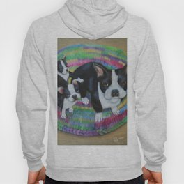 Boston Terrier and Puppies Hoody