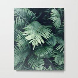 Fern Leaf / Botanical Metal Print
