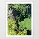 Rainforest From Above by oldurbanfarmhouse