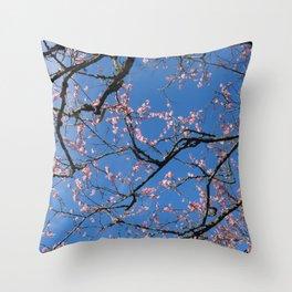 chinese gardens skies Throw Pillow