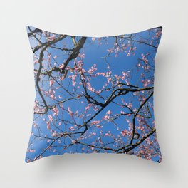 chinese gardens skies Throw Pillow