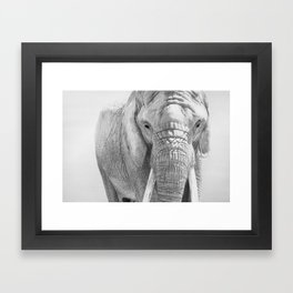 Elephant Photography | Wildlife Art | African | Nature | Animal Photography | Black and White Framed Art Print
