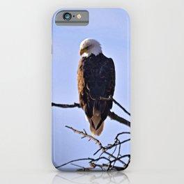 Good Morning, Eagle! iPhone Case
