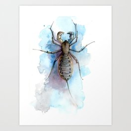 Vinegaroon Art Print