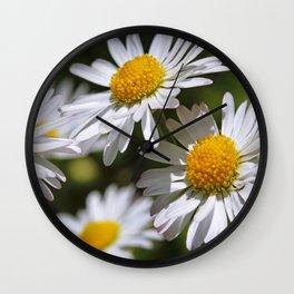 Daisies Wall Clock
