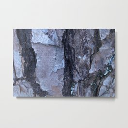 Cracked Bark Metal Print