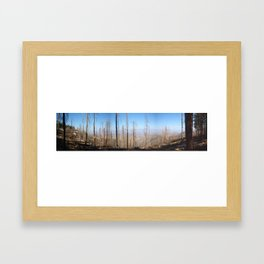 Mount Lemon After Fire Framed Art Print