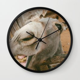 Smile....you're an ass! Wall Clock