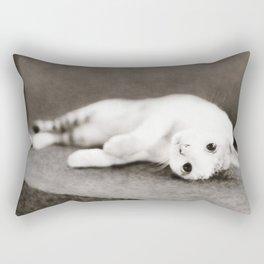 STREET CAT Rectangular Pillow