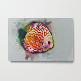 Discus Fish Metal Print